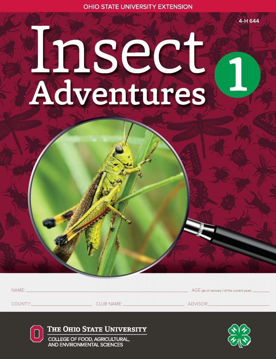 Insect Adventures 1 cover