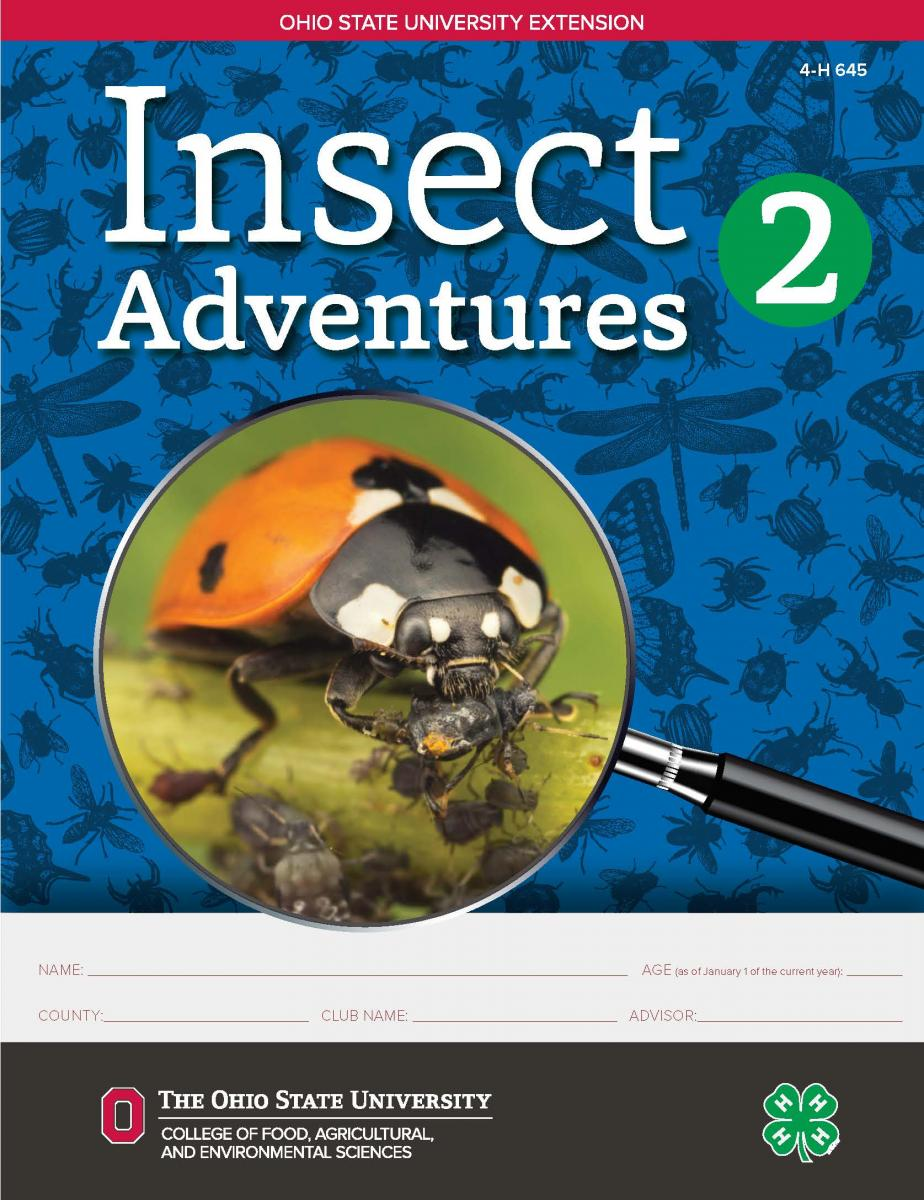 Insect Adventures 2 cover