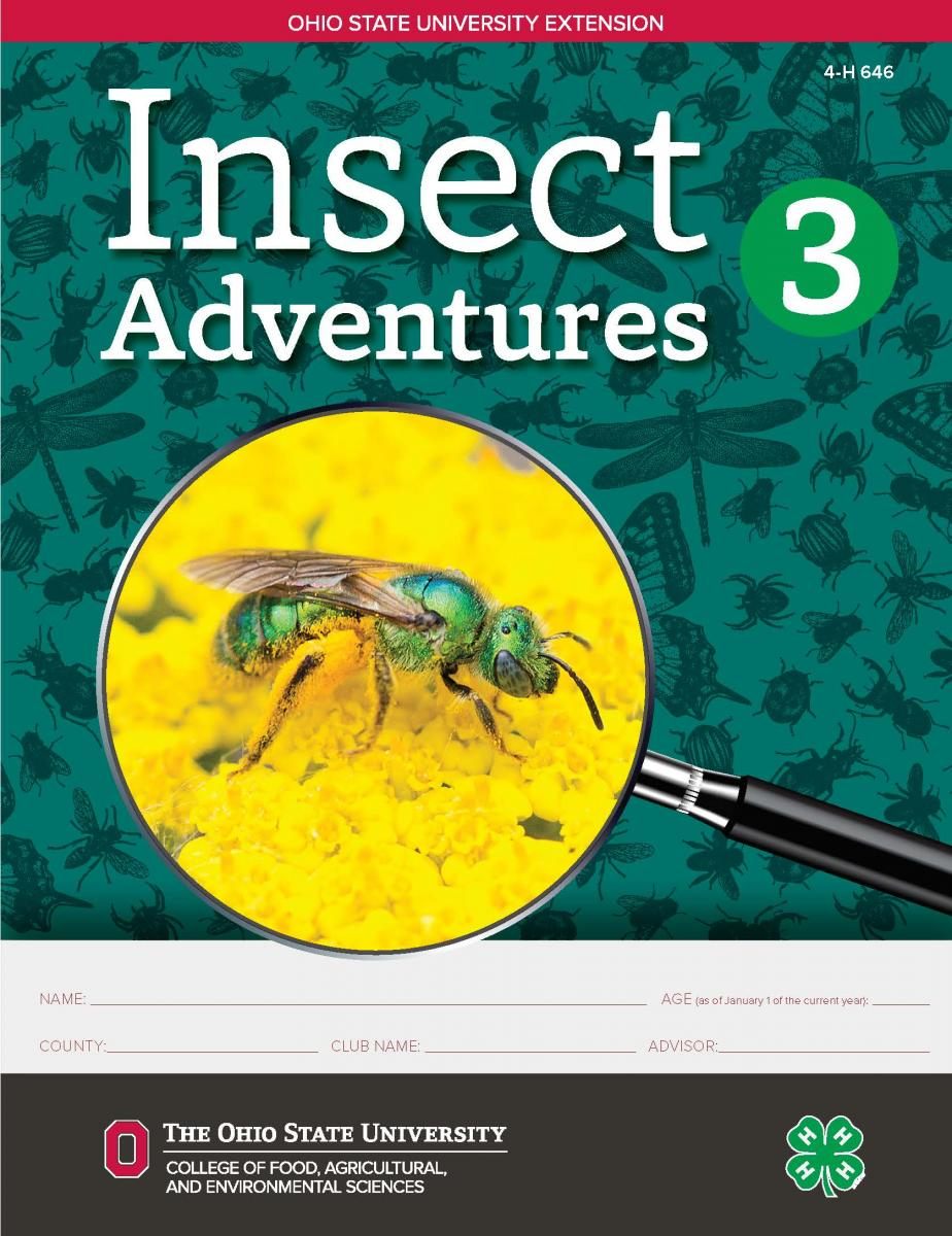 Insect Adventures 3 cover