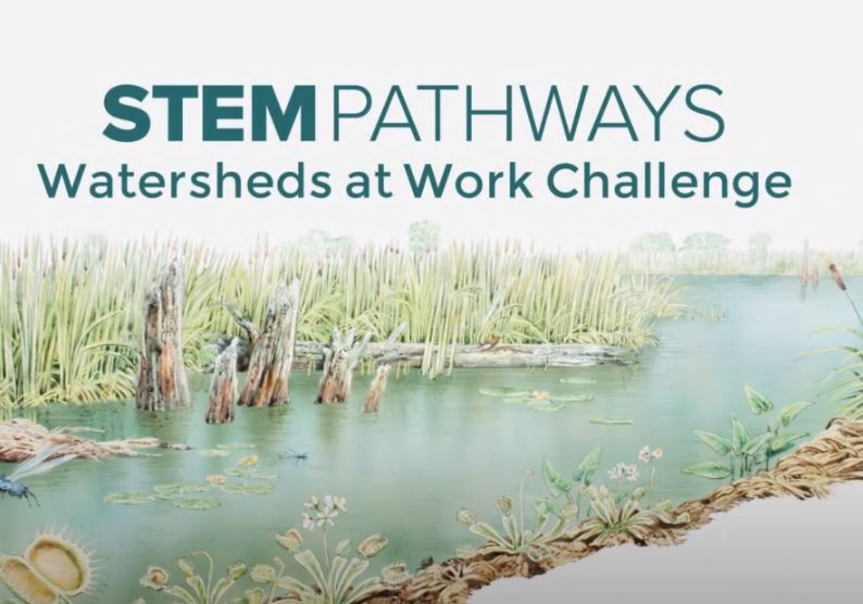Watersheds at Work Challenge