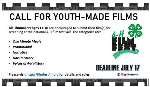 FilmFest 4-H call for films