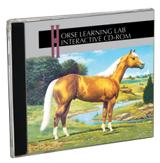Horse Learning Lab CD - image of case