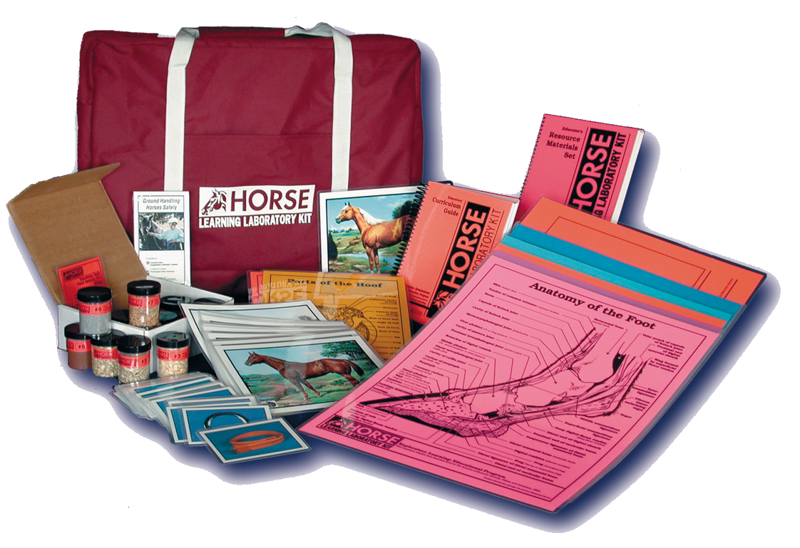 Horse Learning Lab Kit image