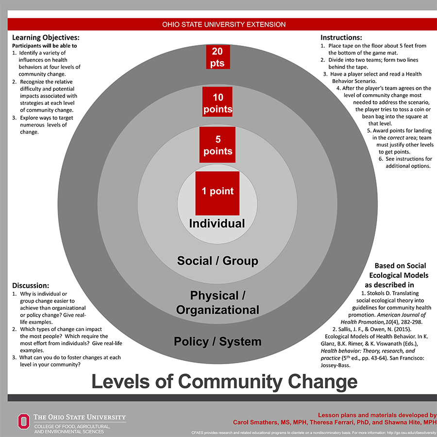 Levels of Community Change Game