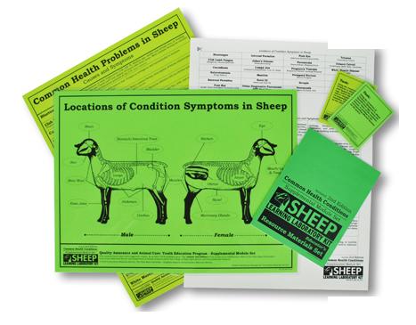 Sheep Supplemental Module Set image