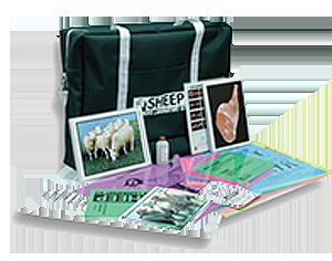 image of Sheep Learning Lab Kit