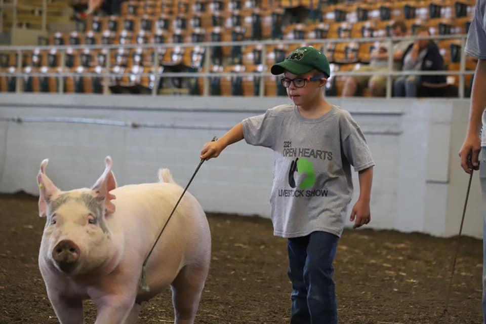 A boy showing a hog.
