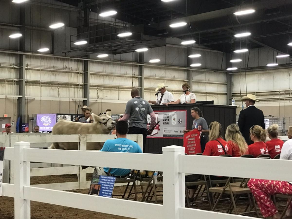 Clark Kellogg in the sale ring. All proceeds from the show and sale benefit Ronald McDonald House Charities® of Central Ohio.