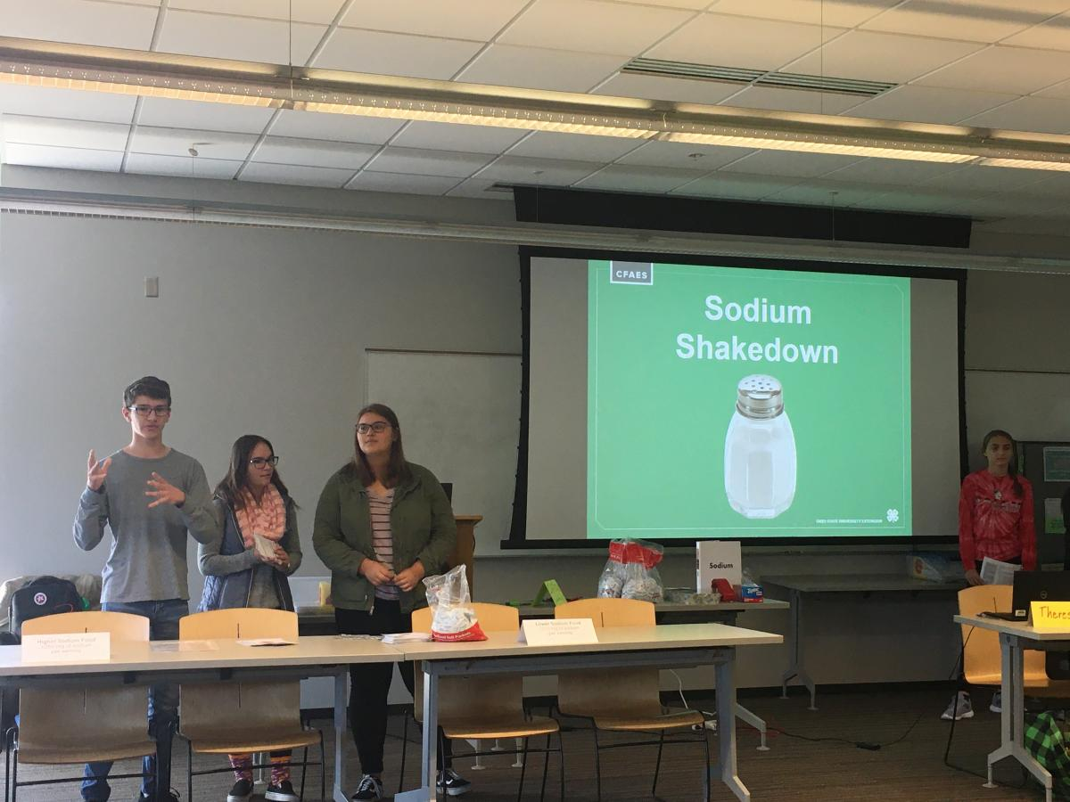 Matthew Swearingen (Adams), Cara Brown (Seneca),  and Virginia Porter (Delaware County) leading activities from the new Sodium Shakedown  Kit during their October 19 meeting.