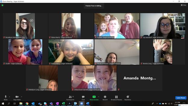 Screen capture of a virtual meeting.