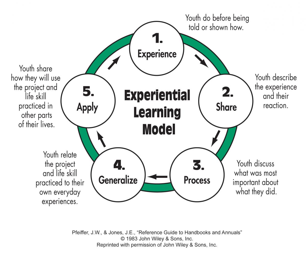 4-h home environment project ideas
