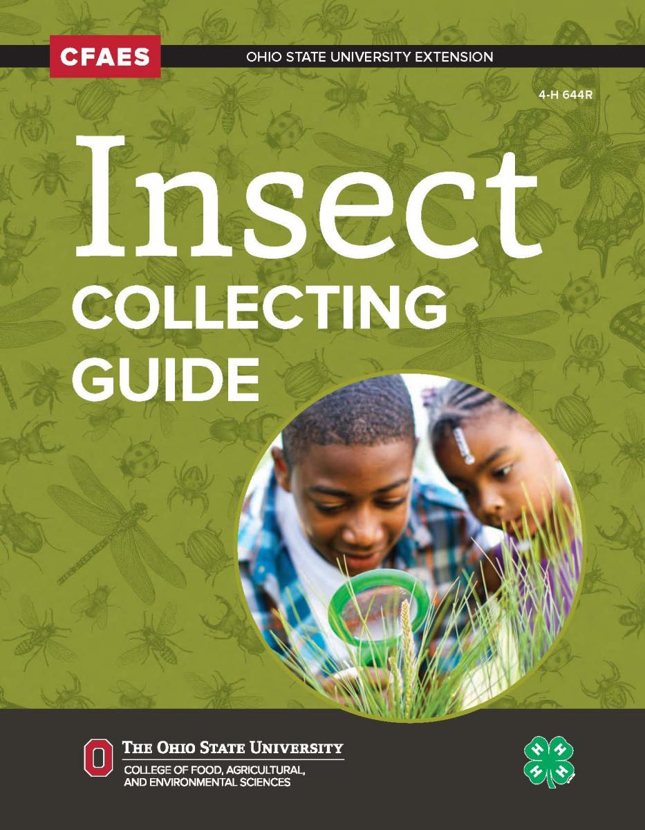Light green cover with the title Insect Collecting Guide and a inset of a boy and young girl looking through a magnifying glass at some grass.