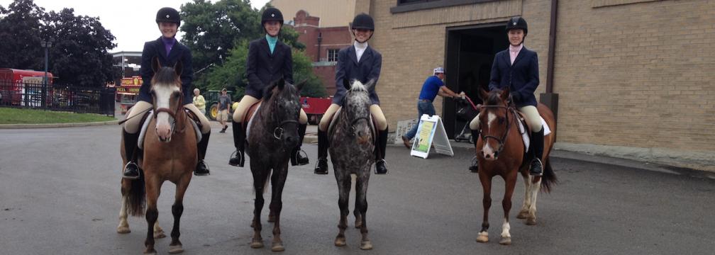 Horse   Ohio 4-H Youth Development