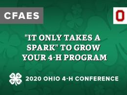 """It Only Takes a Spark"" to Grow Your 4-H Program"