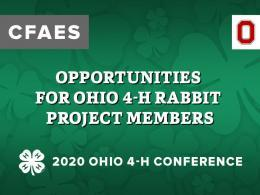 Opportunities for Ohio 4-H Rabbit Project Members