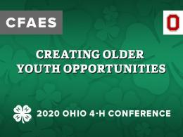 Creating Older Youth Opportunities