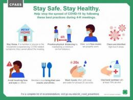 Stay Safe. Stay Healthy.