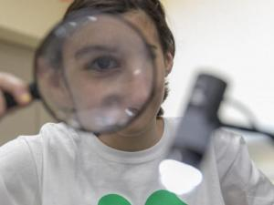 A 4-H member using a magnifying glass to examine insects.