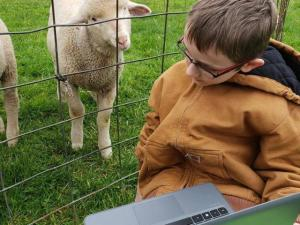 Dylan, a Fulton County 4-H member, showing others his lambs during a meeting.
