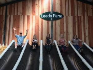 5 adults going down slides at Leeds Farm.