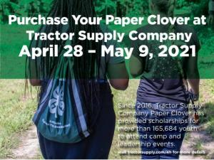 Purchase Your Paper Clover at Tractor Supply April 28 to May 9. Since 2016, Tractor Supply Company Paper Clover has provided scholarships for more than 165,684 youth to attend camp and leadership events. Visit tractorsupply.com/4h for more details.
