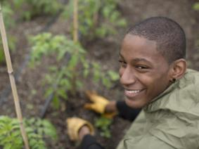 Young boy working in the garden.