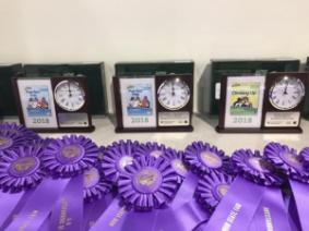Clock trophies and purple outstanding of day ribbons